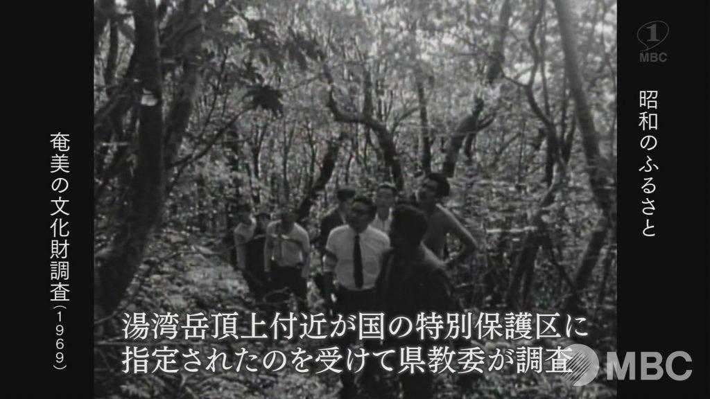 1969年:奄美の文化財調査
