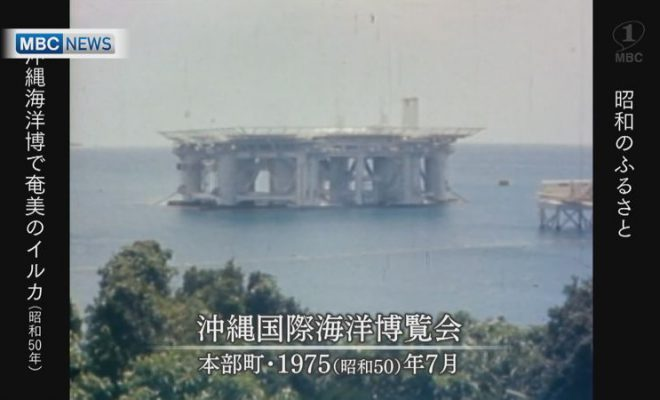 1975年:「沖縄海洋博」に奄美で捕獲・訓練したイルカが出演(後編)