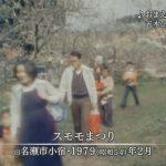 1979年:奄美「スモモまつり」