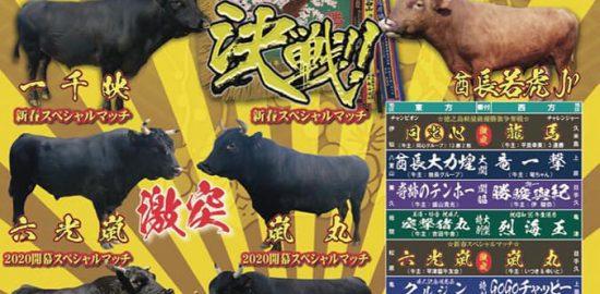 第27回徳之島軽量級優勝旗争奪戦 平成11.12年生成人記念闘牛大会