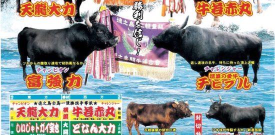 第27回徳之島全島一・ミニ軽量級 ~優勝旗争奪戦徳之島町大会~