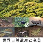 特集「世界自然遺産登録を目指して」
