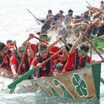 南海日日新聞〔写真〕毎年熱戦を繰り広げる奄美まつりの舟こぎ競争=2019年8月、奄美市名瀬
