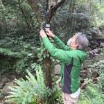 南海日日新聞〔写真〕自動撮影カメラを点検する関係者=奄美大島(奄美大島自然保護協議会提供)