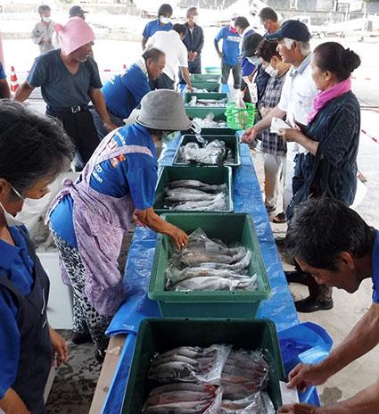 南海日日新聞〔写真〕新鮮な海の幸を求める買い物客でにぎわったお魚祭り=9日、天城町平土野