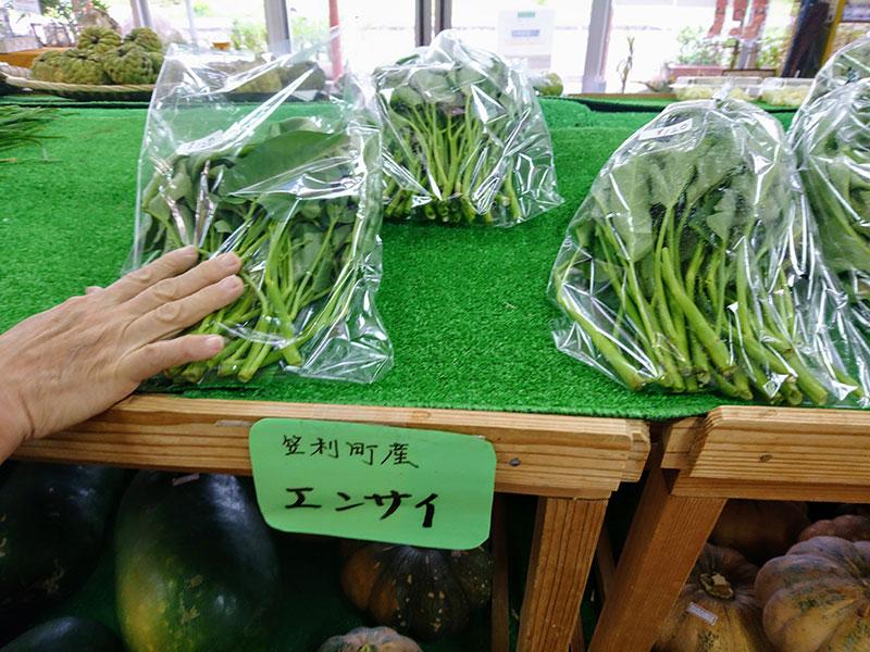 エンサイ(空心菜)