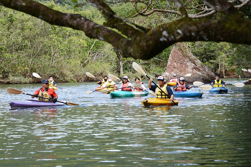 南海日日新聞〔写真〕マングローブ林でカヌー体験を楽しむ生徒=23日、奄美市住用町