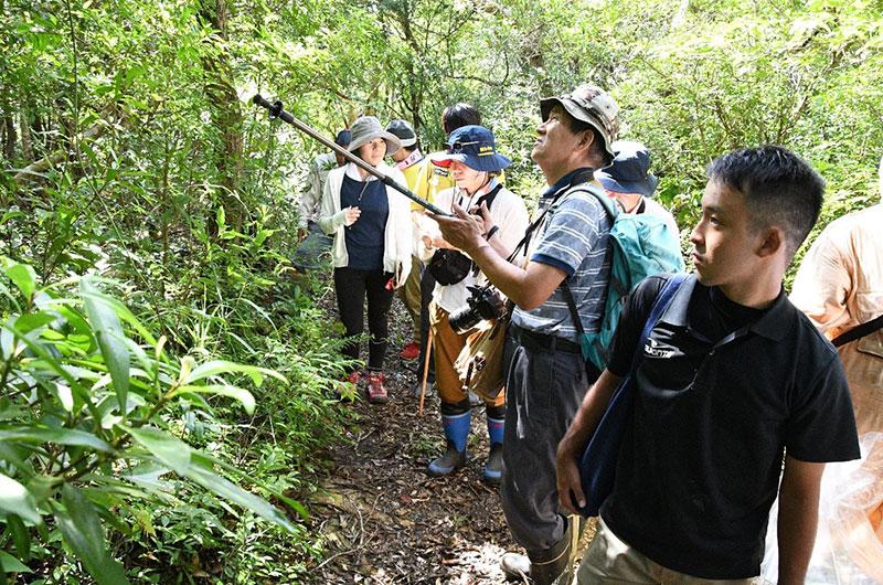 南海日日新聞〔写真〕カムィヤキの森の植物調査を行う関係者ら=17日、伊仙町検福