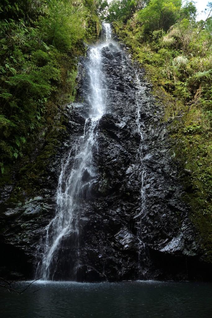 南海日日新聞南海日日新聞〔写真〕大男伝説が残る「トンジュウロウの滝」=8日、龍郷町