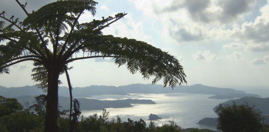 奄美群島で起業したい人を支援する教育プログラムが始まる